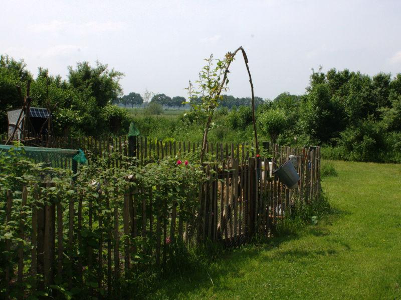 Tuin en omgeving